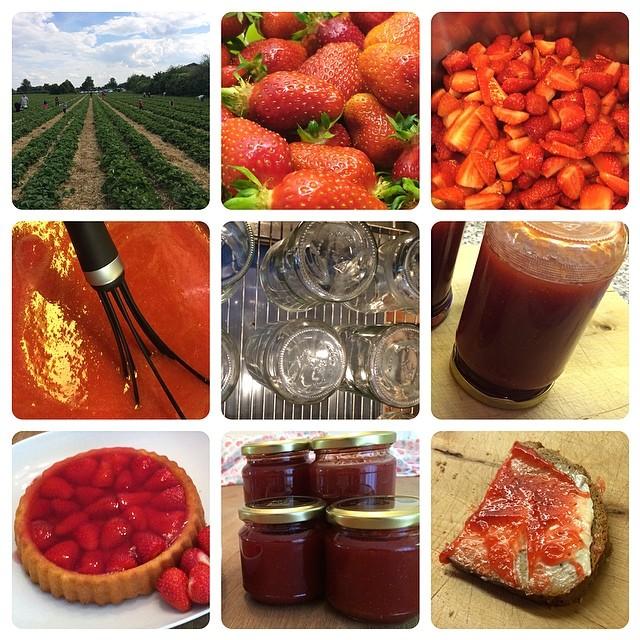 #Erdbeeren 2014/1