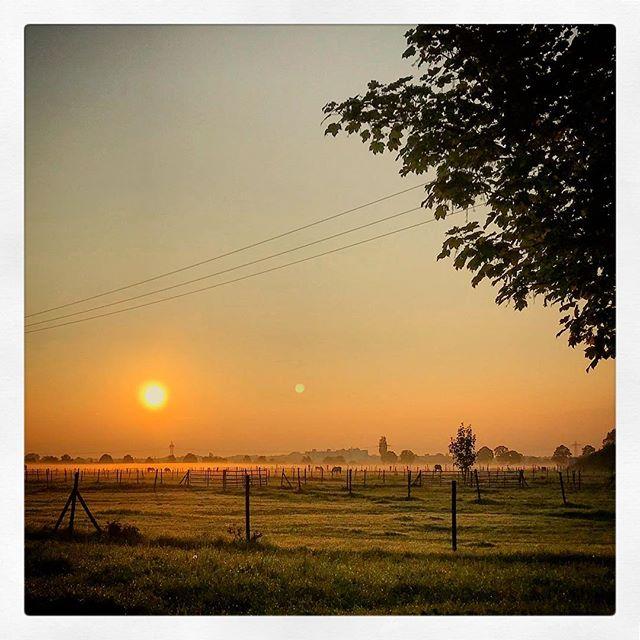 #Herbst #autumn #sunrise
