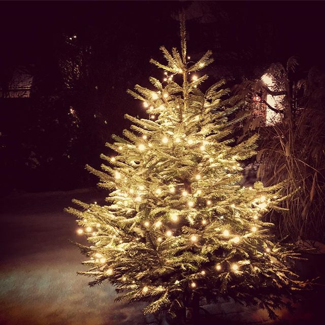 2. #Advent ?????