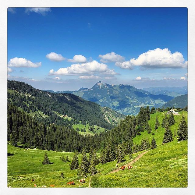 Hüttnwochenende ?? #Taubenstein #Wendelstein #KrottentalerAlm #Hüttn #naturfreunde #Bayern #Alpen #Spitzingsee